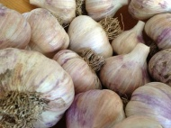 Garlic harvest.